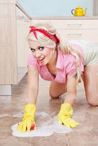 depositphotos_5821402-Sexy-housewife-doing-housework.jpg