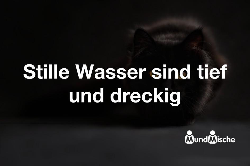 37779-Stille_Wasser_sind_tief_und_dreckig.jpg